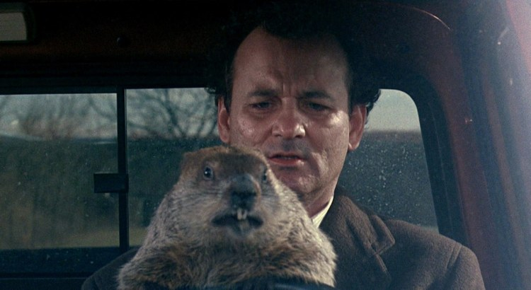 Image from the movie Groundhog Day where man is looking at a groundhog