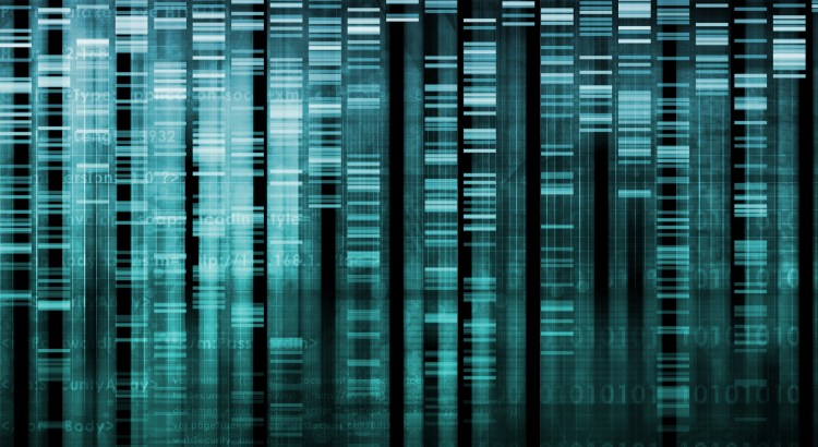 Graphical image of a genetic screen merging with algorithmic code
