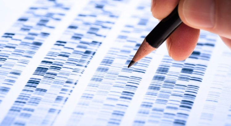 Scientist analyzes DNA gel used in genetics, forensics, drug discovery, biology and medicine