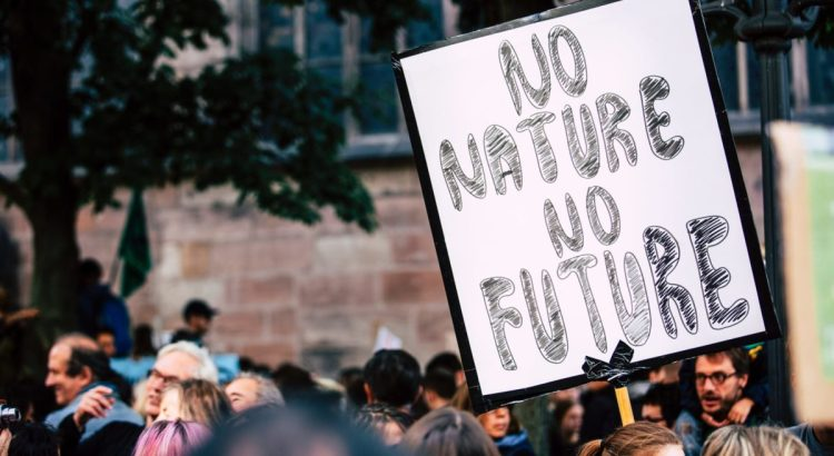 "Climate protest sign that reads ""no nature no future."""