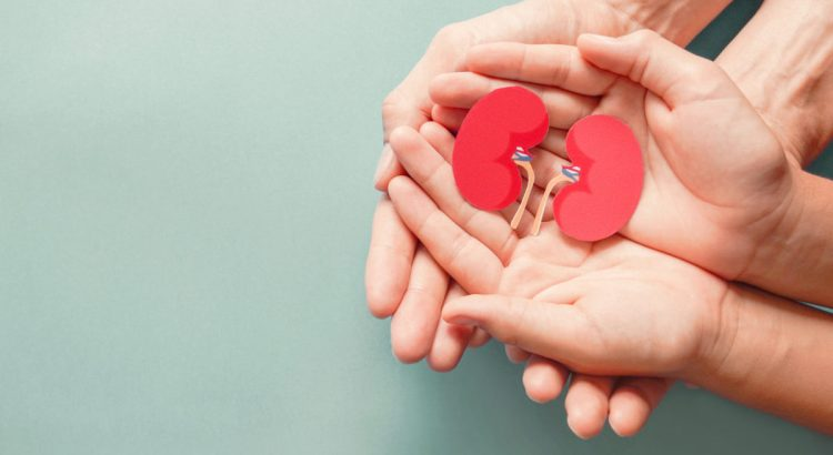 Adult and child holding kidney shaped paper on textured blue background.