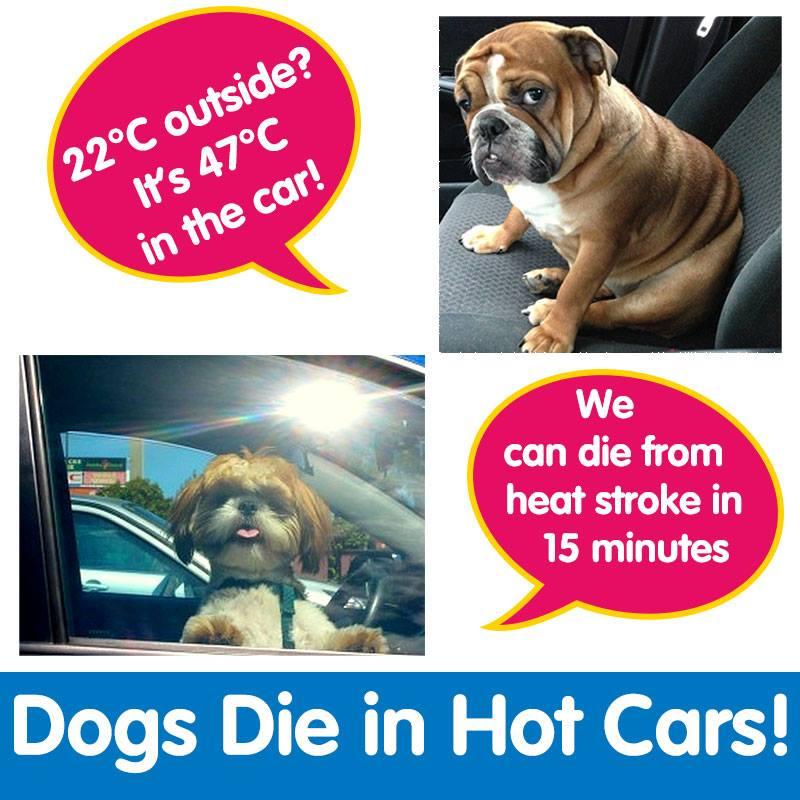 Hot Weather Warning