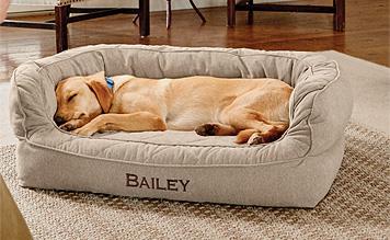 Labradore dog asleep in dog bed on winter night.
