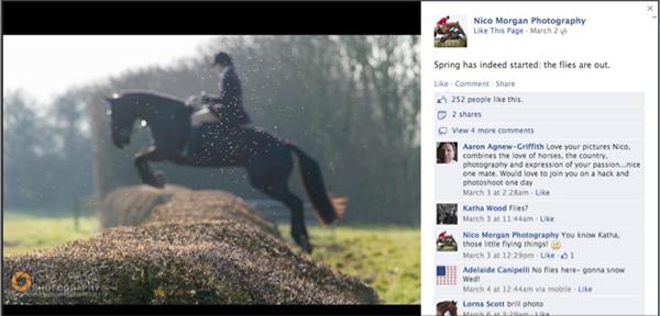 X's Facebook