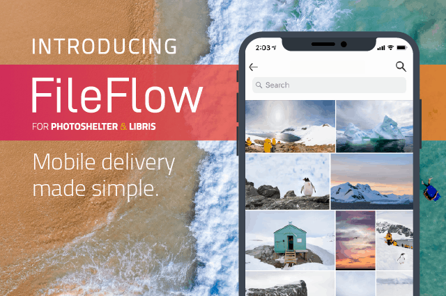 Introducing the FileFlow App: Search, Download and Share Photos Instantly - PhotoShelter Blog