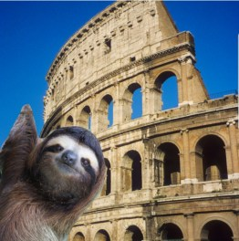 slothrome