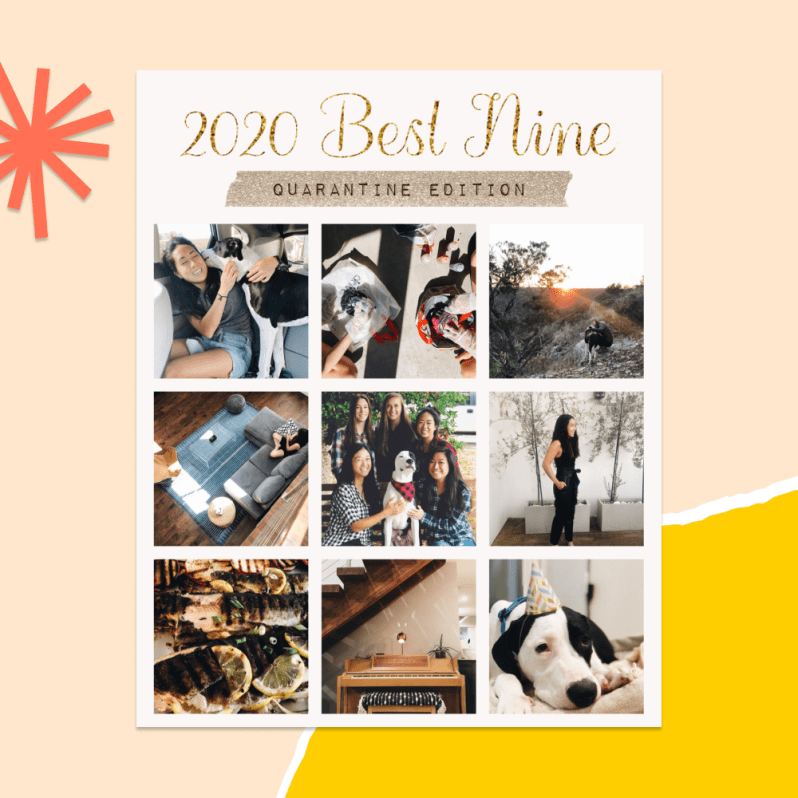 Year-End Review Templates on PicCollage
