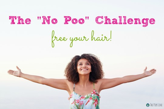Piping Rock - The Pipe Line - Th No Poo Challenge