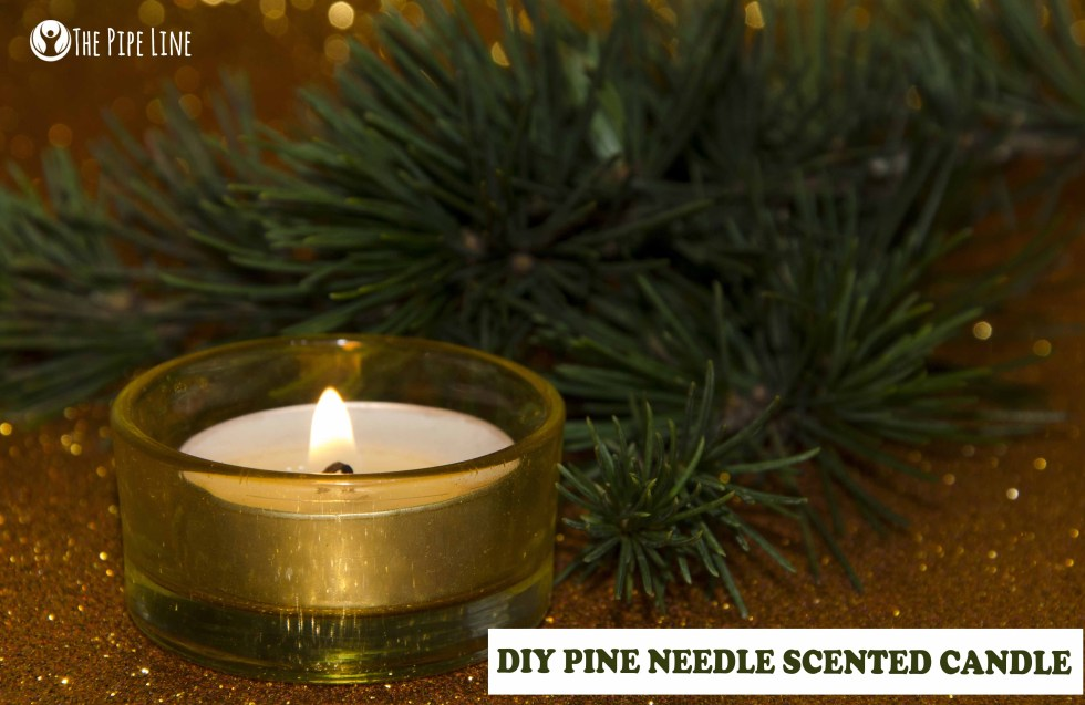 Homemade Pine Needle Candle
