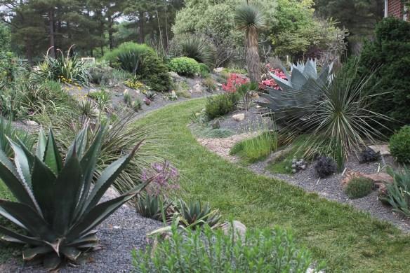 2015 9249 alpine garden toward north