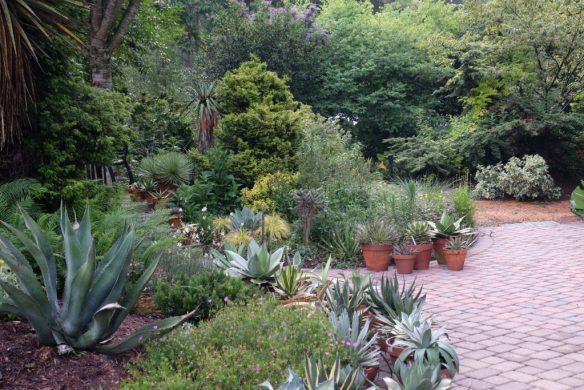 2016-9294-patio-toward-east