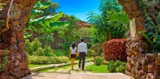 Pareja paseando en los jardines del Diverhotel Tenerife Spa&Garden