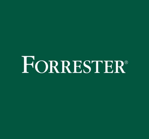 Wunderman Named Leader in Customer Database and Engagement Agencies by Forrester
