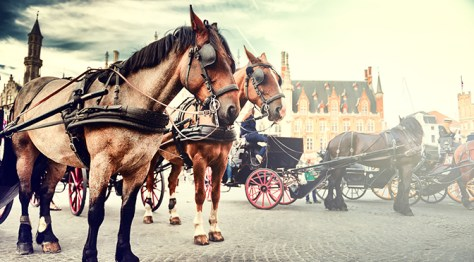 Bruges Carriage