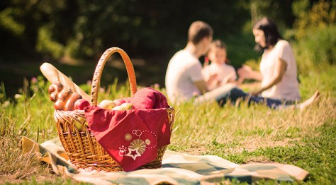 Picnics are a great way to break up a road trip