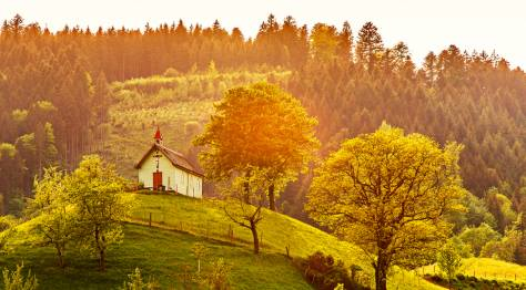 Germany's Black Forest: Black Forest House