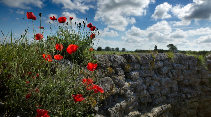 A Guide to Remembrance Day Travel in Flanders