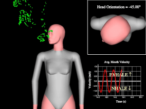 Simulation of the personal micro-environment.