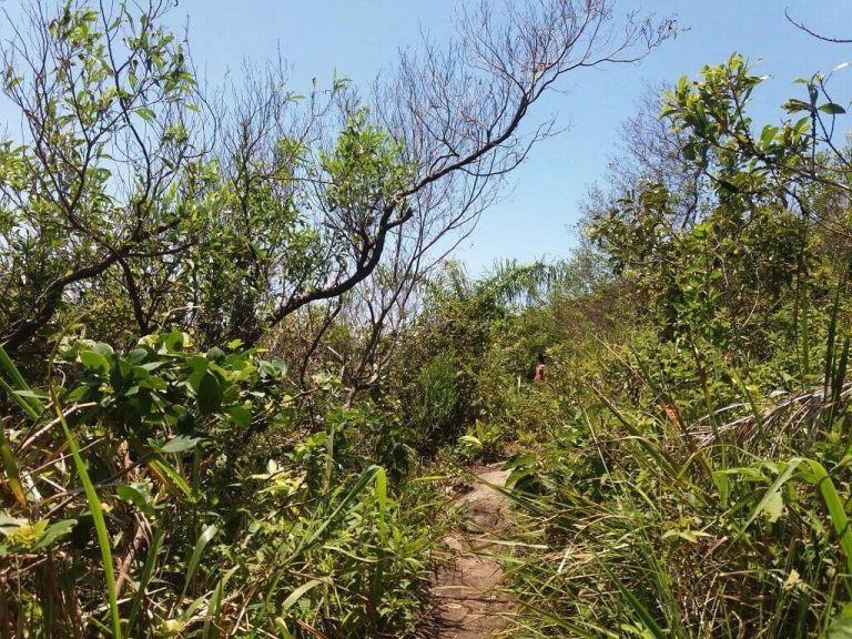 trilhas e montanhas em santa catarina