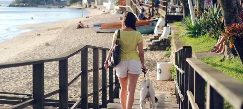 Viagem: Quais os cuidados você precisa ter com o cachorro na praia?
