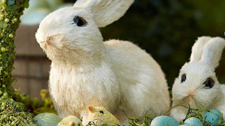 EasterPBFamSweeps