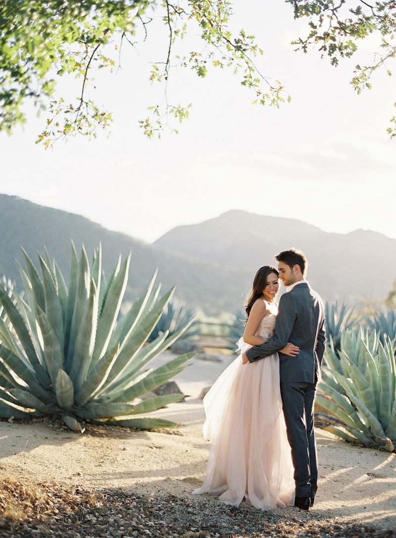 Desert Wedding Photo Agave