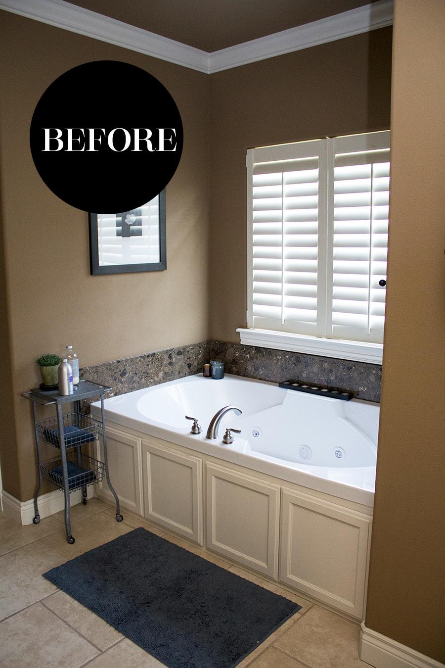 The Ultimate Bathroom Remodel
