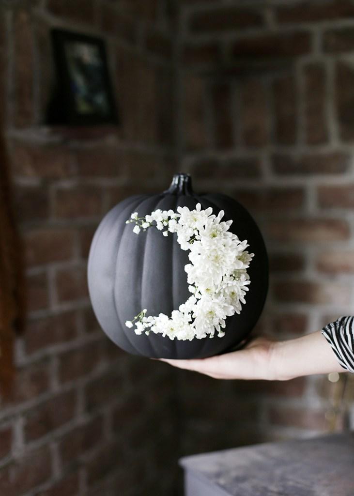 FloralPumpkin31