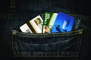 Denim Pocket with library cards