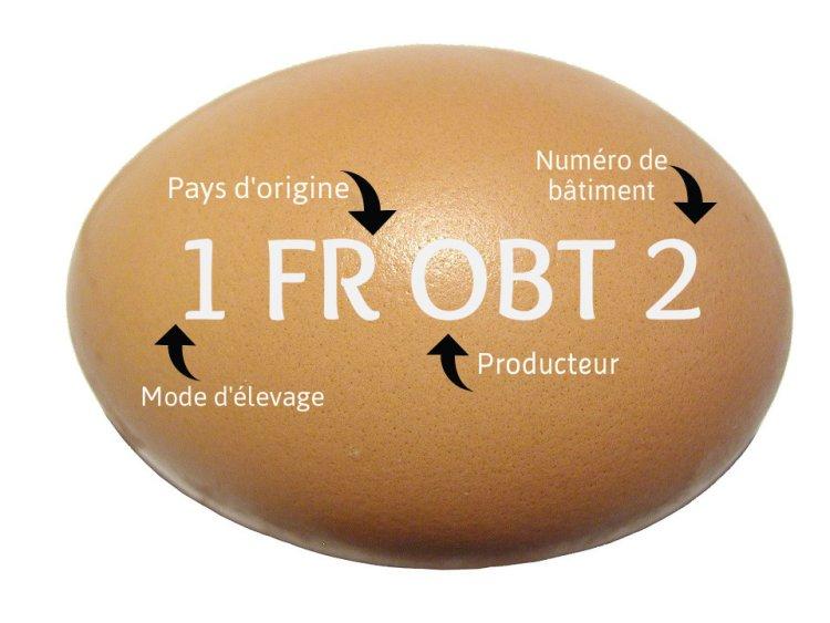 Comment choisir ses œufs ?