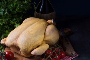 Un article pour tout savoir sur quelle volaille de Noël choisir pour mon repas!