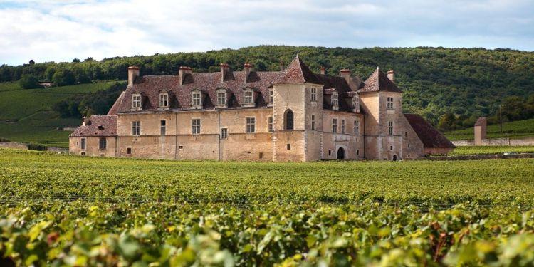 Les châteaux, propriétés typiques du vignoble bordelais, où sont produits les vins de Bordeaux