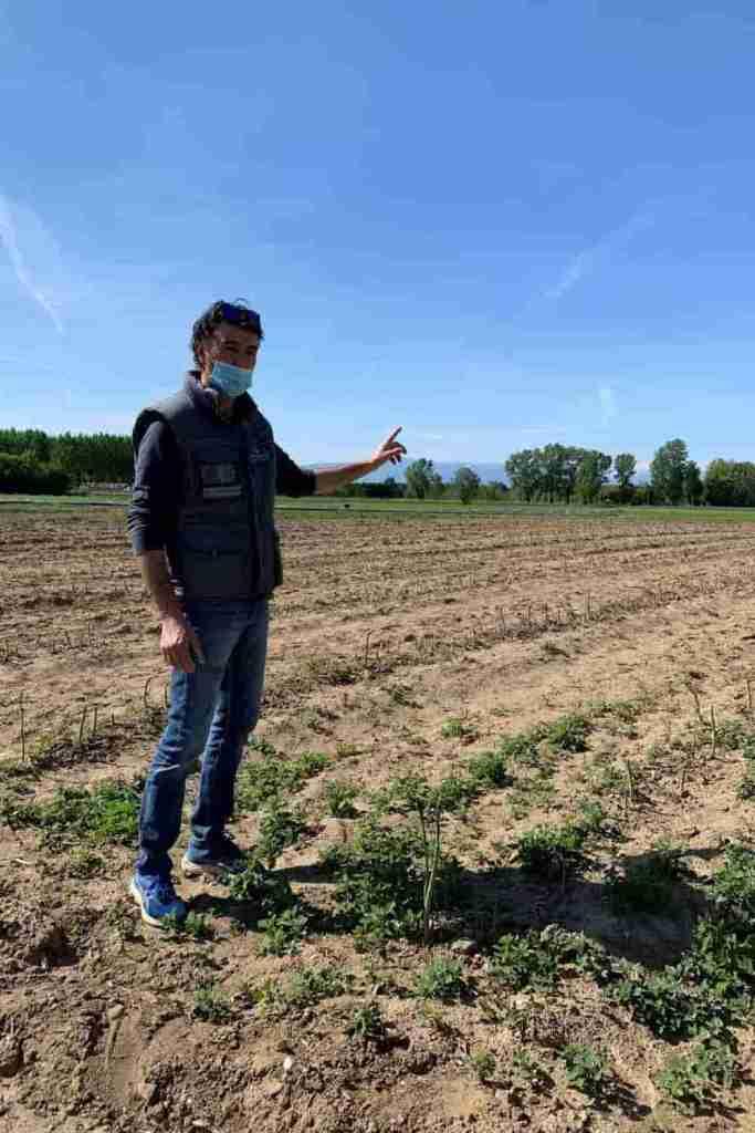 azienda agricola Benozzi