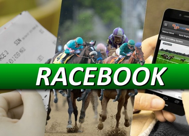 Open a Racebook with a Bookie Pay Per Head