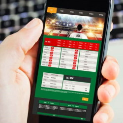 The History of Online Sports Betting and its Growth