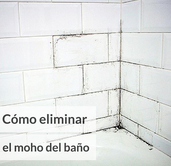 5 formas de eliminar el moho de la pared del ba o - Como eliminar el moho ...