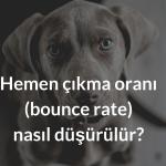 Bounce Rate'i (hemen çıkma oranı) düşürmenin yolları