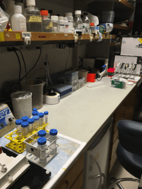 """Where the magic happens. Emma describes her lab bench as pictured as the """"cleanest it's ever been""""."""