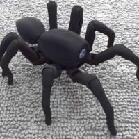 Robugtix T8 - Spiderbot