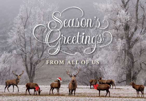 Its Not Too Late To Print Holiday Cards PsPrint Blog