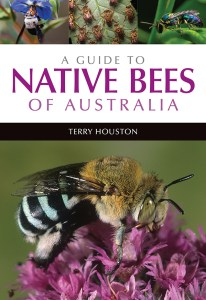 Front cover of A Guide to Native Bees of Australia