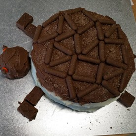 A Loggerhead Turtle chocolate cake