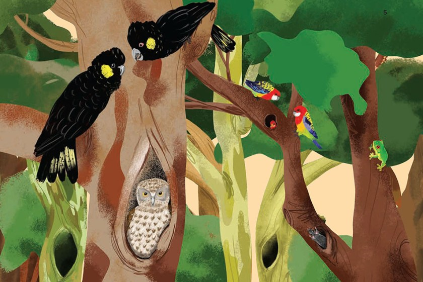 An illustration of animals in tree hollows