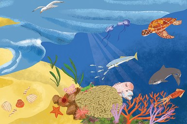 Illustration of marine habitat including fish, turtle and sea bird