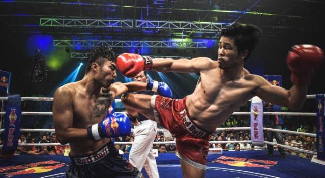 CBD + MMA