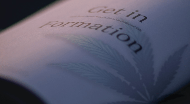 CBD Guide: Here's Why Reading the Label Matters