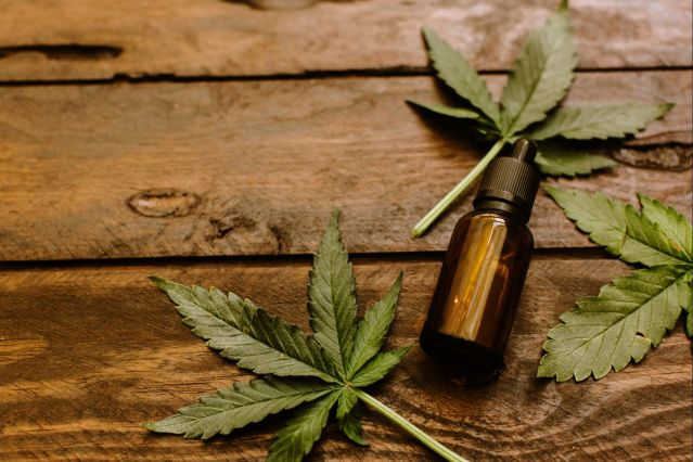 How to Choose CBD Products? Programmer's Guide