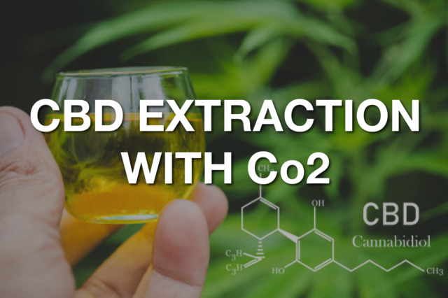 All About Extracting CBD With CO2 Extraction