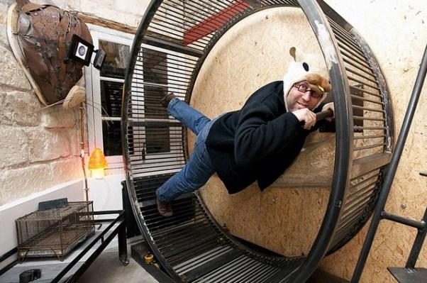 Hamster Wheel 3