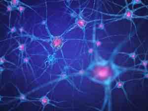 Does Cannabis kill brain cells